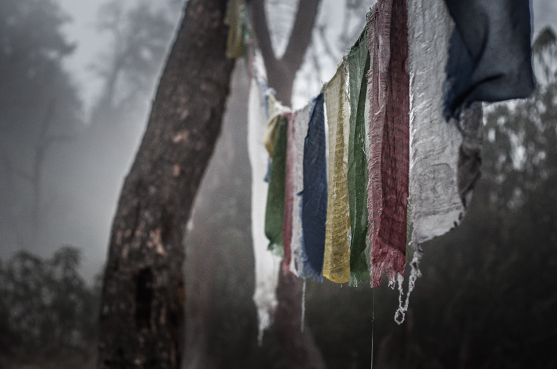 Faded prayer flags hang limp in the frosty forest
