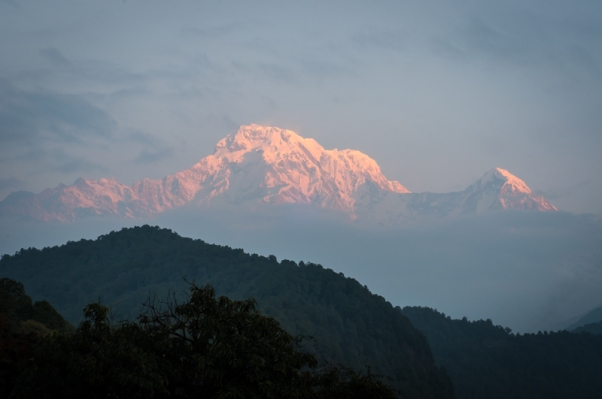 Dawn Light on Annapurna South and Hiun Chuli